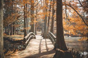 Mein Weg zum inneren Frieden – Teil 4